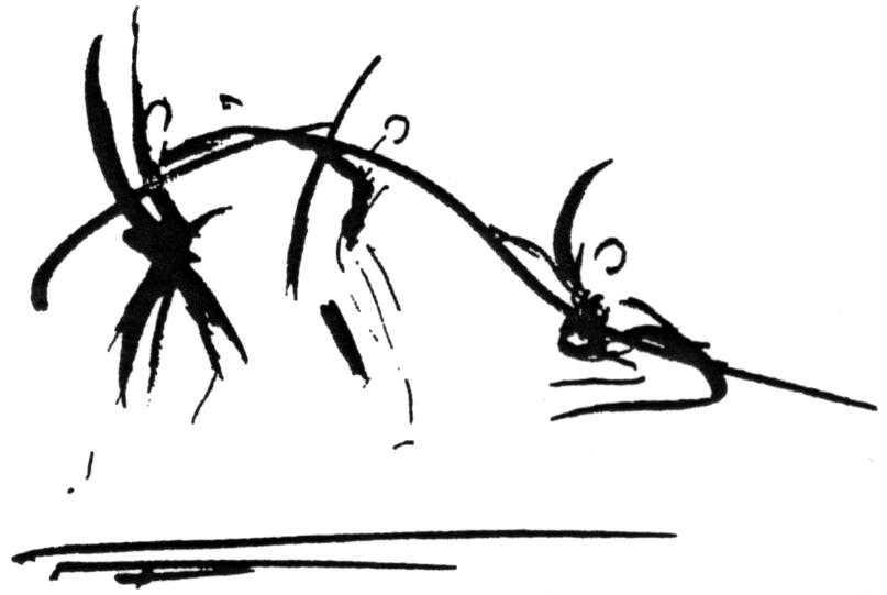 Projet «Danse Drône»